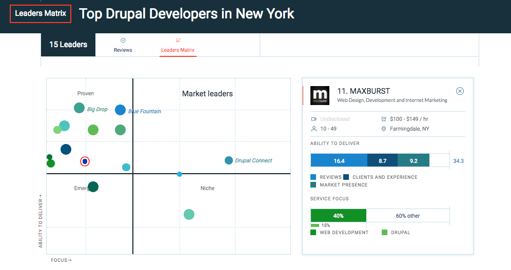 Top Drupal and WordPress Developers in New York